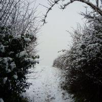 Snowy footpath January 20th 2010, Стретфорд
