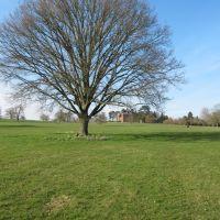 View towards main house, Berrington Hall, Стретфорд