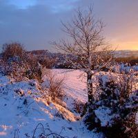 Uplands snow, Строуд