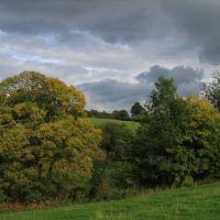 Trees and fields near Randwick, Gloucestershire UK, Строуд