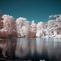 Stratford Pink, Строуд
