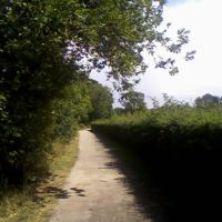 A Path in Tonbridge Sportsground (1), Тонбридж