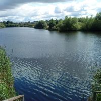 Horseshoe bend, River Tees, Thornaby, Торнаби-он-Тис