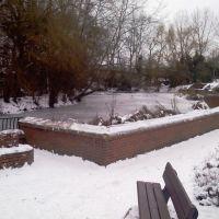 Trowbridge Park frozen Duck Pond - 11.01.2010, Траубридж