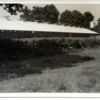 Criadero de Broilers, Wilow Grove, North Bradley 1960, Траубридж