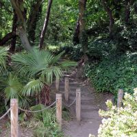 Wooded path, The Leas, Folkestone, Фолькстон