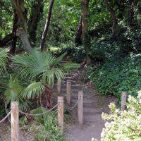 Wooded path, The Leas, Folkestone, Фолькстон