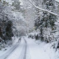 Kingscroft Lane in the Snow, Хавант