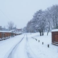 Bidbury Lane in the snow, Хавант