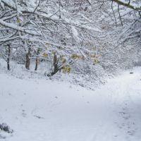 Snow path, Хавант
