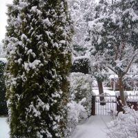 Winter in Hazel Grove, Хазел-Гров