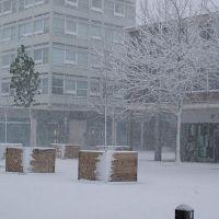 Harlow Snow Town, Харлоу