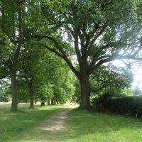 Rothampstead Park, Харпенден