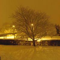 night, Хатфилд