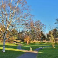 Birch Grove*, Херефорд