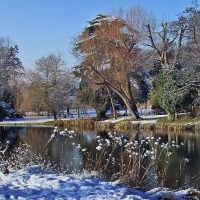 River Lea - December, Хертфорд