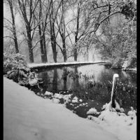 Snowbank b&w, Хертфорд