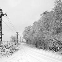 Mangrove Lane, Хертфорд