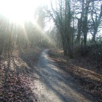 Line of old railway, cycle route 61, Hertford, Хертфорд