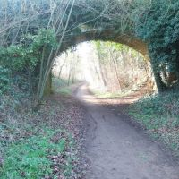 Cycle route 61, Near Hertford, Хертфорд