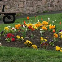 flower bed in Wooler, Хид