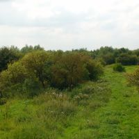 Lkn SW down the Branch towards the Platt Br-Bickershaw Line, Хиндли