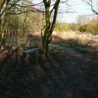 Path, Хиндли