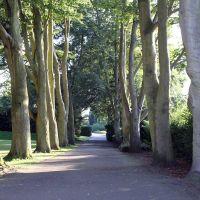 Hollycroft Park, Хинкли