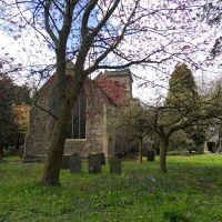 Sibson village churchyard is full of trees., Хьютон-вит-Роби