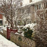 Snowy front gardens, Church Street, Ecclesfield, Sheffield S35, Чапелтаун
