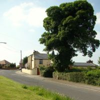 Potter Hill Lane, High Green, Sheffield S35, Чапелтаун