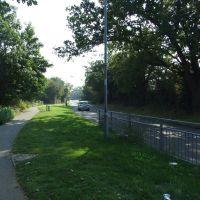 Lawn Lane, Springfield, Челмсфорд