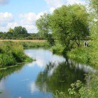 Reflections, Челмсфорд