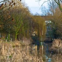Central Park Chelmsford - River Chelmer, Челмсфорд