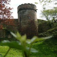 Tower, Честер