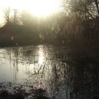 Puddle in the sunshine, Near Lee Navigation, Cheshunt, Чешант
