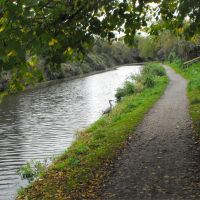The Chichester ship canal, Чичестер