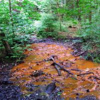 Red Beck, Heaton Woods (natural ironstone stained spring), Шипли