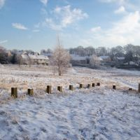 Winter Solstice In Baildon 4, Шипли