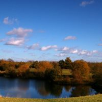 Molesey Heath, Эшер