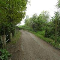 Footpath meets road, Эшер