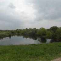 Molesey Heath Nature Reserve, Эшер