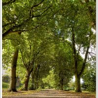 Poeples Park / Ballymena / 2010, Баллимена