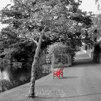 Red Bench, Бангор