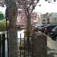 Newry (Newry Canal), Ньюри