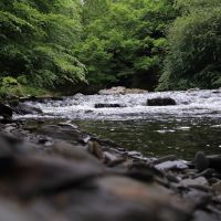 Holiday June 2014 Hafod Estate Wales (Nr Devils Bridge), Абердар