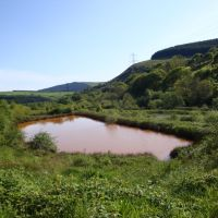 Orange pond. Tonmawr. Part of the Pelenna minewater treatment system., Порт Талбот