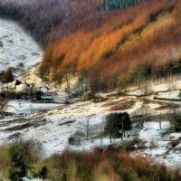 snowline, Рондда