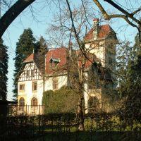 Villa im Oberdorf, Дорнбирн