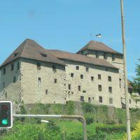 Castle, Feldkirch, Фельдкирх